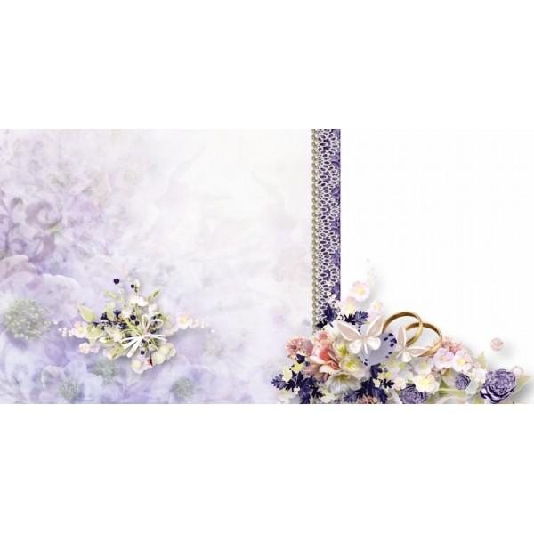 Violet General Photo Album