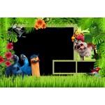 Birds and Kids Photo Album