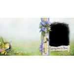 Spring Flower Travel  Photo Album