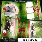 Red Heart Wedding Photo Album